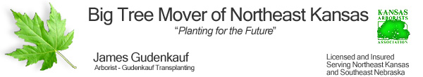 "Big Tree Mover of Northeast Kansas "" Planting for the Future "", James Gudenkauf, Kansas Arborist, Licensed and Insured"